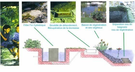 Cjconcept services bassin naturel rosenau 68 - Piscine naturelle en kit ...